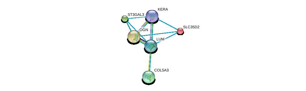 http://string-db.org/version_10/api/image/networkList?limit=0&targetmode=proteins&caller_identity=gene_cards&network_flavor=evidence&identifiers=9606.ENSP00000266718%0d%0a9606.ENSP00000262551%0d%0a9606.ENSP00000262915%0d%0a9606.ENSP00000264828%0d%0a9606.ENSP00000266719%0d%0a9606.ENSP00000253270%0d%0a