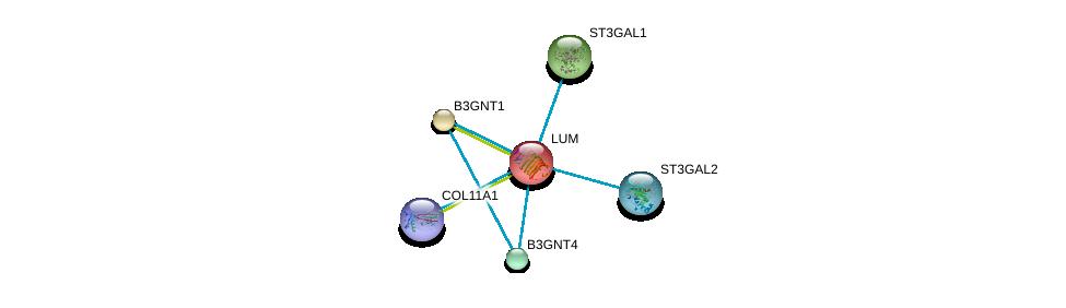 http://string-db.org/version_10/api/image/networkList?limit=0&targetmode=proteins&caller_identity=gene_cards&network_flavor=evidence&identifiers=9606.ENSP00000266718%0d%0a9606.ENSP00000345477%0d%0a9606.ENSP00000359114%0d%0a9606.ENSP00000309096%0d%0a9606.ENSP00000319636%0d%0a9606.ENSP00000318445%0d%0a