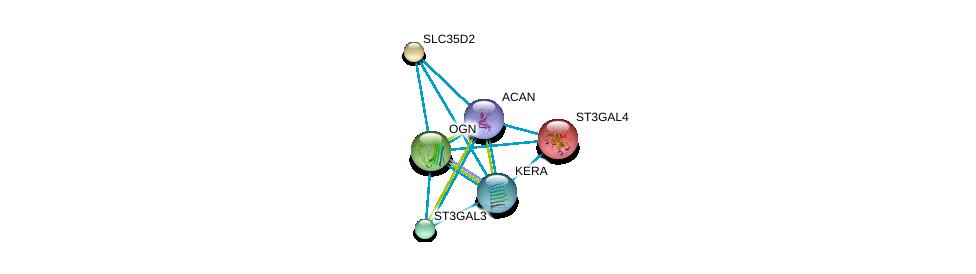 http://string-db.org/version_10/api/image/networkList?limit=0&targetmode=proteins&caller_identity=gene_cards&network_flavor=evidence&identifiers=9606.ENSP00000266719%0d%0a9606.ENSP00000253270%0d%0a9606.ENSP00000262551%0d%0a9606.ENSP00000262915%0d%0a9606.ENSP00000227495%0d%0a9606.ENSP00000387356%0d%0a
