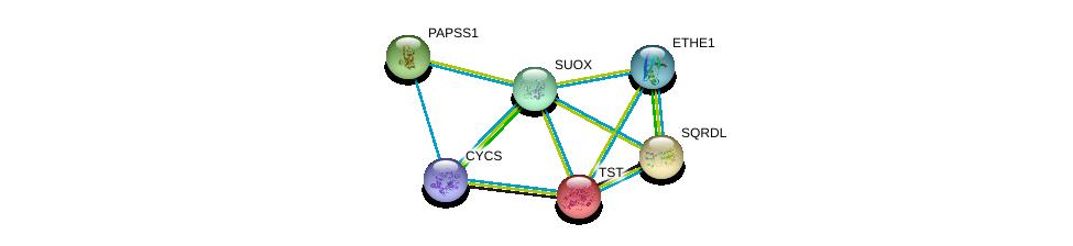 http://string-db.org/version_10/api/image/networkList?limit=0&targetmode=proteins&caller_identity=gene_cards&network_flavor=evidence&identifiers=9606.ENSP00000266971%0d%0a9606.ENSP00000249042%0d%0a9606.ENSP00000260324%0d%0a9606.ENSP00000265174%0d%0a9606.ENSP00000292147%0d%0a9606.ENSP00000307786%0d%0a