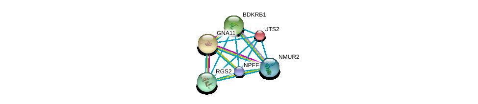 http://string-db.org/version_10/api/image/networkList?limit=0&targetmode=proteins&caller_identity=gene_cards&network_flavor=evidence&identifiers=9606.ENSP00000267017%0d%0a9606.ENSP00000054668%0d%0a9606.ENSP00000078429%0d%0a9606.ENSP00000216629%0d%0a9606.ENSP00000235382%0d%0a9606.ENSP00000255262%0d%0a