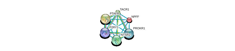 http://string-db.org/version_10/api/image/networkList?limit=0&targetmode=proteins&caller_identity=gene_cards&network_flavor=evidence&identifiers=9606.ENSP00000267017%0d%0a9606.ENSP00000301974%0d%0a9606.ENSP00000303522%0d%0a9606.ENSP00000303686%0d%0a9606.ENSP00000303775%0d%0a9606.ENSP00000304767%0d%0a