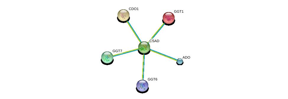 http://string-db.org/version_10/api/image/networkList?limit=0&targetmode=proteins&caller_identity=gene_cards&network_flavor=evidence&identifiers=9606.ENSP00000267085%0d%0a9606.ENSP00000362888%0d%0a9606.ENSP00000248923%0d%0a9606.ENSP00000338964%0d%0a9606.ENSP00000458307%0d%0a9606.ENSP00000250535%0d%0a