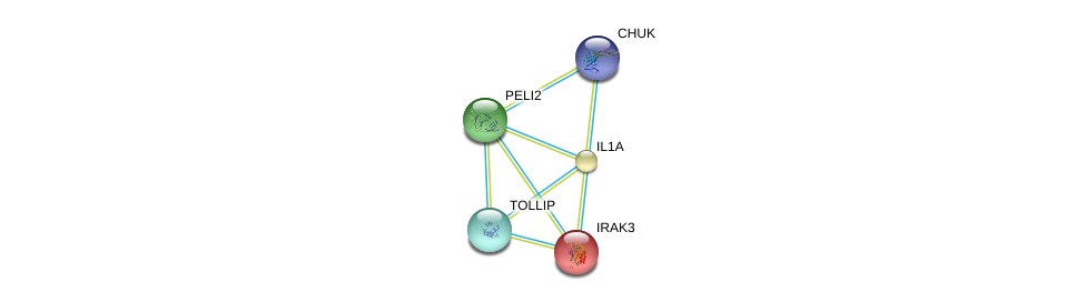 http://string-db.org/version_10/api/image/networkList?limit=0&targetmode=proteins&caller_identity=gene_cards&network_flavor=evidence&identifiers=9606.ENSP00000267460%0d%0a9606.ENSP00000263339%0d%0a9606.ENSP00000314733%0d%0a9606.ENSP00000261233%0d%0a9606.ENSP00000261233%0d%0a9606.ENSP00000359424%0d%0a