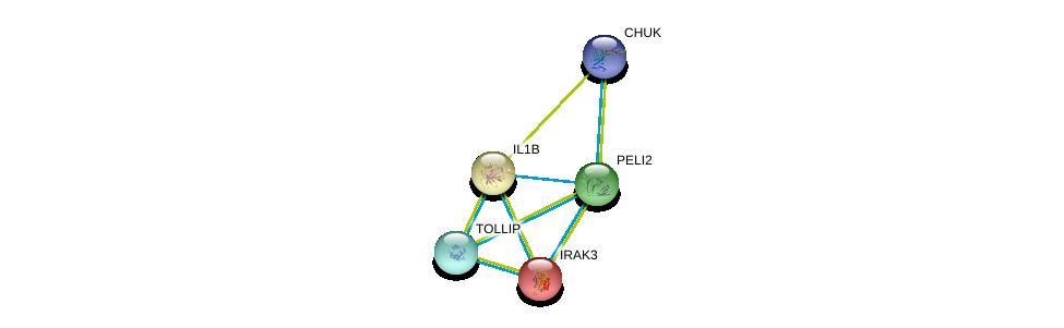 http://string-db.org/version_10/api/image/networkList?limit=0&targetmode=proteins&caller_identity=gene_cards&network_flavor=evidence&identifiers=9606.ENSP00000267460%0d%0a9606.ENSP00000263341%0d%0a9606.ENSP00000359424%0d%0a9606.ENSP00000261233%0d%0a9606.ENSP00000261233%0d%0a9606.ENSP00000314733%0d%0a