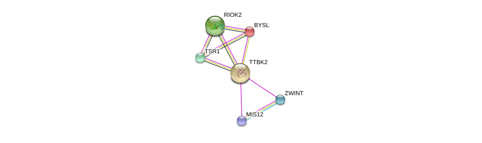 http://string-db.org/version_10/api/image/networkList?limit=0&targetmode=proteins&caller_identity=gene_cards&network_flavor=evidence&identifiers=9606.ENSP00000267890%0d%0a9606.ENSP00000363055%0d%0a9606.ENSP00000370557%0d%0a9606.ENSP00000230340%0d%0a9606.ENSP00000283109%0d%0a9606.ENSP00000301364%0d%0a