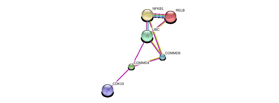http://string-db.org/version_10/api/image/networkList?limit=0&targetmode=proteins&caller_identity=gene_cards&network_flavor=evidence&identifiers=9606.ENSP00000267935%0d%0a9606.ENSP00000344818%0d%0a9606.ENSP00000348054%0d%0a9606.ENSP00000357907%0d%0a9606.ENSP00000221452%0d%0a9606.ENSP00000226574%0d%0a