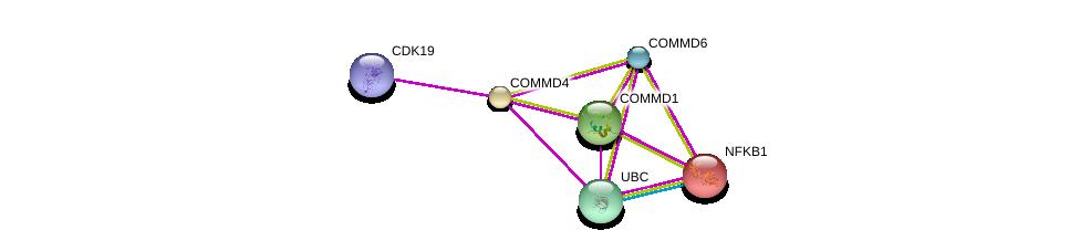 http://string-db.org/version_10/api/image/networkList?limit=0&targetmode=proteins&caller_identity=gene_cards&network_flavor=evidence&identifiers=9606.ENSP00000267935%0d%0a9606.ENSP00000344818%0d%0a9606.ENSP00000357907%0d%0a9606.ENSP00000348054%0d%0a9606.ENSP00000308236%0d%0a9606.ENSP00000226574%0d%0a