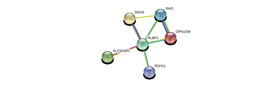 http://string-db.org/version_10/api/image/networkList?limit=0&targetmode=proteins&caller_identity=gene_cards&network_flavor=evidence&identifiers=9606.ENSP00000268125%0d%0a9606.ENSP00000370750%0d%0a9606.ENSP00000249389%0d%0a9606.ENSP00000296271%0d%0a9606.ENSP00000257895%0d%0a9606.ENSP00000262613%0d%0a