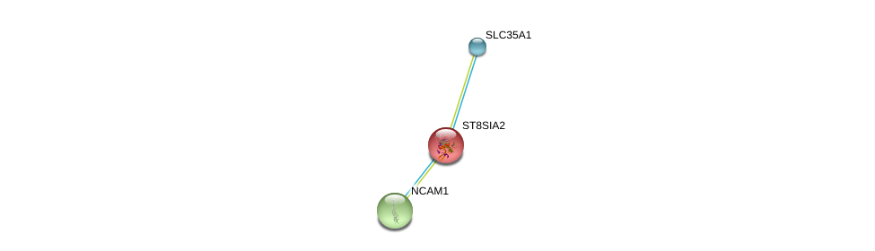 http://string-db.org/version_10/api/image/networkList?limit=0&targetmode=proteins&caller_identity=gene_cards&network_flavor=evidence&identifiers=9606.ENSP00000268164%0d%0a9606.ENSP00000358565%0d%0a9606.ENSP00000318472%0d%0a