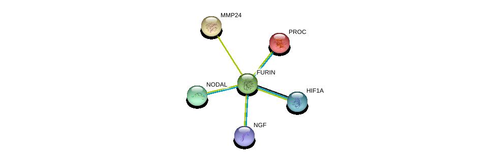 http://string-db.org/version_10/api/image/networkList?limit=0&targetmode=proteins&caller_identity=gene_cards&network_flavor=evidence&identifiers=9606.ENSP00000268171%0d%0a9606.ENSP00000338018%0d%0a9606.ENSP00000358525%0d%0a9606.ENSP00000234071%0d%0a9606.ENSP00000246186%0d%0a9606.ENSP00000287139%0d%0a