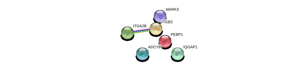 http://string-db.org/version_10/api/image/networkList?limit=0&targetmode=proteins&caller_identity=gene_cards&network_flavor=evidence&identifiers=9606.ENSP00000268182%0d%0a9606.ENSP00000262407%0d%0a9606.ENSP00000262017%0d%0a9606.ENSP00000261313%0d%0a9606.ENSP00000411397%0d%0a9606.ENSP00000286355%0d%0a