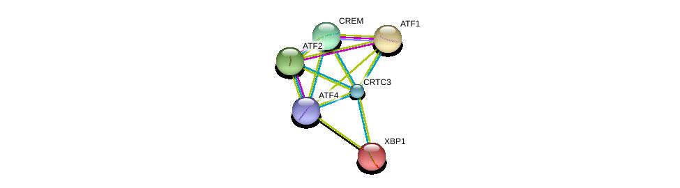http://string-db.org/version_10/api/image/networkList?limit=0&targetmode=proteins&caller_identity=gene_cards&network_flavor=evidence&identifiers=9606.ENSP00000268184%0d%0a9606.ENSP00000216037%0d%0a9606.ENSP00000262053%0d%0a9606.ENSP00000264110%0d%0a9606.ENSP00000265372%0d%0a9606.ENSP00000336790%0d%0a