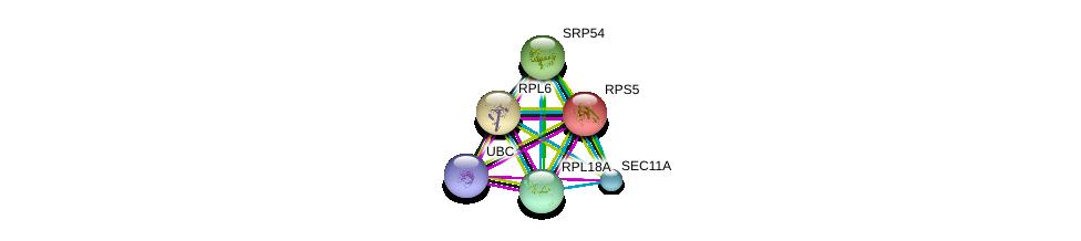 http://string-db.org/version_10/api/image/networkList?limit=0&targetmode=proteins&caller_identity=gene_cards&network_flavor=evidence&identifiers=9606.ENSP00000268220%0d%0a9606.ENSP00000344818%0d%0a9606.ENSP00000196551%0d%0a9606.ENSP00000202773%0d%0a9606.ENSP00000216774%0d%0a9606.ENSP00000222247%0d%0a