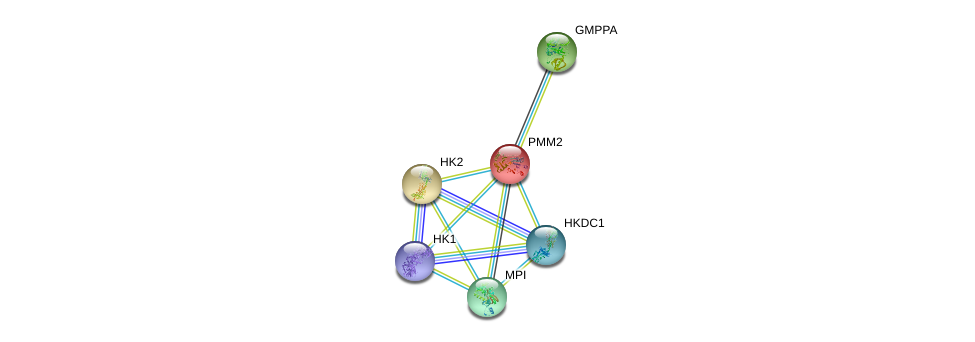 http://string-db.org/version_10/api/image/networkList?limit=0&targetmode=proteins&caller_identity=gene_cards&network_flavor=evidence&identifiers=9606.ENSP00000268261%0d%0a9606.ENSP00000290573%0d%0a9606.ENSP00000315925%0d%0a9606.ENSP00000384774%0d%0a9606.ENSP00000346643%0d%0a9606.ENSP00000318318%0d%0a