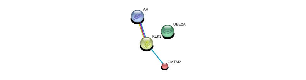 http://string-db.org/version_10/api/image/networkList?limit=0&targetmode=proteins&caller_identity=gene_cards&network_flavor=evidence&identifiers=9606.ENSP00000268595%0d%0a9606.ENSP00000314151%0d%0a9606.ENSP00000360613%0d%0a9606.ENSP00000363822%0d%0a