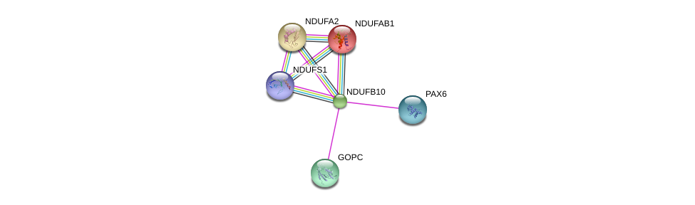 http://string-db.org/version_10/api/image/networkList?limit=0&targetmode=proteins&caller_identity=gene_cards&network_flavor=evidence&identifiers=9606.ENSP00000268668%0d%0a9606.ENSP00000252102%0d%0a9606.ENSP00000357484%0d%0a9606.ENSP00000368401%0d%0a9606.ENSP00000007516%0d%0a9606.ENSP00000392709%0d%0a