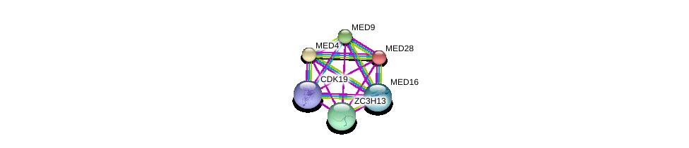 http://string-db.org/version_10/api/image/networkList?limit=0&targetmode=proteins&caller_identity=gene_cards&network_flavor=evidence&identifiers=9606.ENSP00000268711%0d%0a9606.ENSP00000282007%0d%0a9606.ENSP00000237380%0d%0a9606.ENSP00000325612%0d%0a9606.ENSP00000357907%0d%0a9606.ENSP00000258648%0d%0a