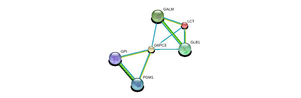 http://string-db.org/version_10/api/image/networkList?limit=0&targetmode=proteins&caller_identity=gene_cards&network_flavor=evidence&identifiers=9606.ENSP00000269097%0d%0a9606.ENSP00000264162%0d%0a9606.ENSP00000360124%0d%0a9606.ENSP00000306920%0d%0a9606.ENSP00000405573%0d%0a9606.ENSP00000272252%0d%0a