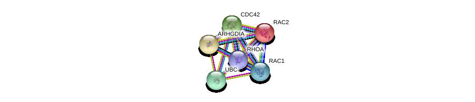 http://string-db.org/version_10/api/image/networkList?limit=0&targetmode=proteins&caller_identity=gene_cards&network_flavor=evidence&identifiers=9606.ENSP00000269321%0d%0a9606.ENSP00000348461%0d%0a9606.ENSP00000400175%0d%0a9606.ENSP00000344818%0d%0a9606.ENSP00000314458%0d%0a9606.ENSP00000249071%0d%0a