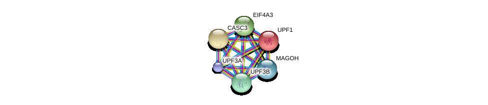 http://string-db.org/version_10/api/image/networkList?limit=0&targetmode=proteins&caller_identity=gene_cards&network_flavor=evidence&identifiers=9606.ENSP00000269349%0d%0a9606.ENSP00000262803%0d%0a9606.ENSP00000264645%0d%0a9606.ENSP00000276201%0d%0a9606.ENSP00000360525%0d%0a9606.ENSP00000364448%0d%0a