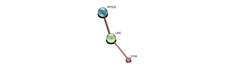 http://string-db.org/version_10/api/image/networkList?limit=0&targetmode=proteins&caller_identity=gene_cards&network_flavor=evidence&identifiers=9606.ENSP00000269445%0d%0a9606.ENSP00000344818%0d%0a9606.ENSP00000348849%0d%0a