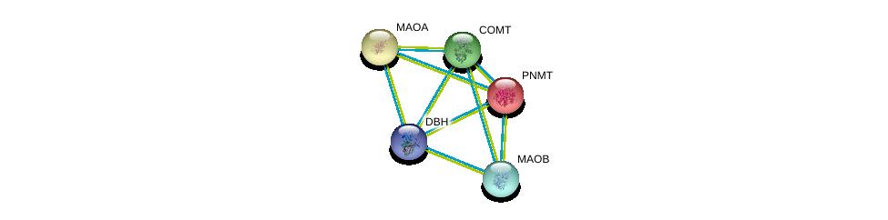 http://string-db.org/version_10/api/image/networkList?limit=0&targetmode=proteins&caller_identity=gene_cards&network_flavor=evidence&identifiers=9606.ENSP00000269582%0d%0a9606.ENSP00000367309%0d%0a9606.ENSP00000354511%0d%0a9606.ENSP00000354511%0d%0a9606.ENSP00000340684%0d%0a9606.ENSP00000376776%0d%0a