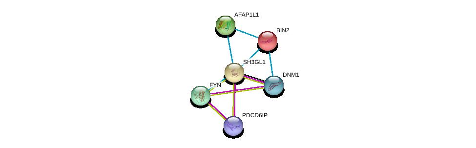 http://string-db.org/version_10/api/image/networkList?limit=0&targetmode=proteins&caller_identity=gene_cards&network_flavor=evidence&identifiers=9606.ENSP00000269886%0d%0a9606.ENSP00000411825%0d%0a9606.ENSP00000362014%0d%0a9606.ENSP00000296721%0d%0a9606.ENSP00000267012%0d%0a9606.ENSP00000346671%0d%0a