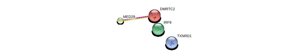 http://string-db.org/version_10/api/image/networkList?limit=0&targetmode=proteins&caller_identity=gene_cards&network_flavor=evidence&identifiers=9606.ENSP00000269945%0d%0a9606.ENSP00000380073%0d%0a9606.ENSP00000314343%0d%0a9606.ENSP00000434516%0d%0a
