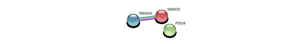 http://string-db.org/version_10/api/image/networkList?limit=0&targetmode=proteins&caller_identity=gene_cards&network_flavor=evidence&identifiers=9606.ENSP00000270077%0d%0a9606.ENSP00000262160%0d%0a9606.ENSP00000341551%0d%0a