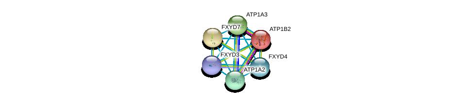 http://string-db.org/version_10/api/image/networkList?limit=0&targetmode=proteins&caller_identity=gene_cards&network_flavor=evidence&identifiers=9606.ENSP00000270310%0d%0a9606.ENSP00000389770%0d%0a9606.ENSP00000354490%0d%0a9606.ENSP00000302397%0d%0a9606.ENSP00000250111%0d%0a9606.ENSP00000363575%0d%0a