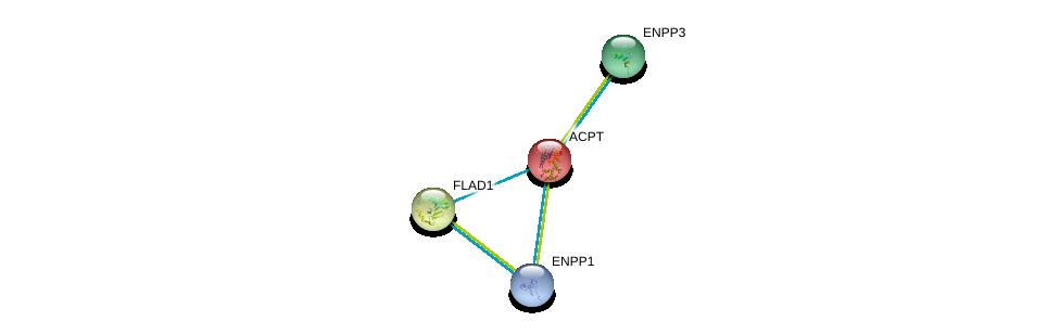 http://string-db.org/version_10/api/image/networkList?limit=0&targetmode=proteins&caller_identity=gene_cards&network_flavor=evidence&identifiers=9606.ENSP00000270593%0d%0a9606.ENSP00000354238%0d%0a9606.ENSP00000350265%0d%0a9606.ENSP00000292180%0d%0a