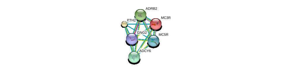 http://string-db.org/version_10/api/image/networkList?limit=0&targetmode=proteins&caller_identity=gene_cards&network_flavor=evidence&identifiers=9606.ENSP00000270631%0d%0a9606.ENSP00000243911%0d%0a9606.ENSP00000305372%0d%0a9606.ENSP00000311405%0d%0a9606.ENSP00000318077%0d%0a9606.ENSP00000334448%0d%0a