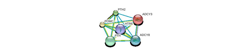 http://string-db.org/version_10/api/image/networkList?limit=0&targetmode=proteins&caller_identity=gene_cards&network_flavor=evidence&identifiers=9606.ENSP00000270631%0d%0a9606.ENSP00000260600%0d%0a9606.ENSP00000264708%0d%0a9606.ENSP00000282091%0d%0a9606.ENSP00000286355%0d%0a9606.ENSP00000289753%0d%0a