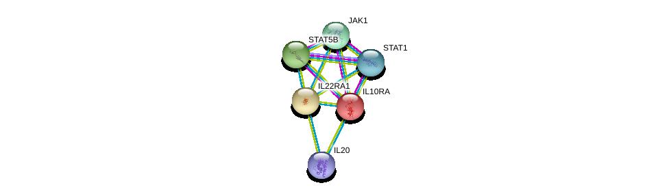 http://string-db.org/version_10/api/image/networkList?limit=0&targetmode=proteins&caller_identity=gene_cards&network_flavor=evidence&identifiers=9606.ENSP00000270800%0d%0a9606.ENSP00000293328%0d%0a9606.ENSP00000356063%0d%0a9606.ENSP00000227752%0d%0a9606.ENSP00000354394%0d%0a9606.ENSP00000343204%0d%0a