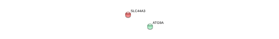 http://string-db.org/version_10/api/image/networkList?limit=0&targetmode=proteins&caller_identity=gene_cards&network_flavor=evidence&identifiers=9606.ENSP00000271227%0d%0a9606.ENSP00000355173%0d%0a