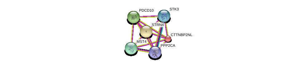 http://string-db.org/version_10/api/image/networkList?limit=0&targetmode=proteins&caller_identity=gene_cards&network_flavor=evidence&identifiers=9606.ENSP00000271277%0d%0a9606.ENSP00000418447%0d%0a9606.ENSP00000390500%0d%0a9606.ENSP00000377867%0d%0a9606.ENSP00000376506%0d%0a9606.ENSP00000375777%0d%0a