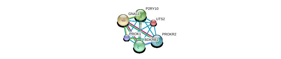 http://string-db.org/version_10/api/image/networkList?limit=0&targetmode=proteins&caller_identity=gene_cards&network_flavor=evidence&identifiers=9606.ENSP00000271331%0d%0a9606.ENSP00000054668%0d%0a9606.ENSP00000078429%0d%0a9606.ENSP00000171757%0d%0a9606.ENSP00000216629%0d%0a9606.ENSP00000217270%0d%0a