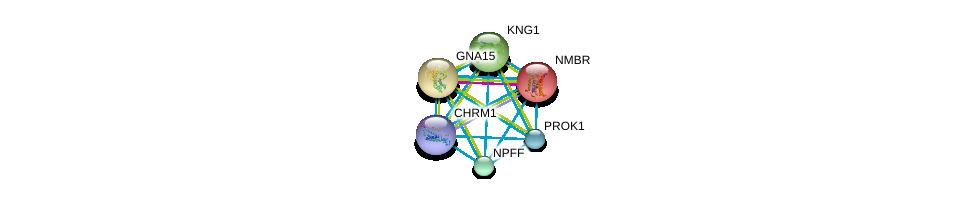 http://string-db.org/version_10/api/image/networkList?limit=0&targetmode=proteins&caller_identity=gene_cards&network_flavor=evidence&identifiers=9606.ENSP00000271331%0d%0a9606.ENSP00000267017%0d%0a9606.ENSP00000262958%0d%0a9606.ENSP00000258042%0d%0a9606.ENSP00000265023%0d%0a9606.ENSP00000306490%0d%0a