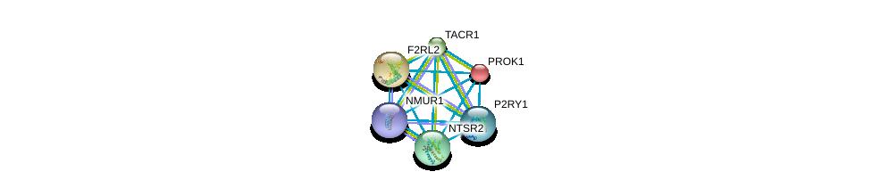 http://string-db.org/version_10/api/image/networkList?limit=0&targetmode=proteins&caller_identity=gene_cards&network_flavor=evidence&identifiers=9606.ENSP00000271331%0d%0a9606.ENSP00000303522%0d%0a9606.ENSP00000303686%0d%0a9606.ENSP00000296641%0d%0a9606.ENSP00000304767%0d%0a9606.ENSP00000305877%0d%0a