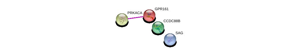 http://string-db.org/version_10/api/image/networkList?limit=0&targetmode=proteins&caller_identity=gene_cards&network_flavor=evidence&identifiers=9606.ENSP00000271357%0d%0a9606.ENSP00000309591%0d%0a9606.ENSP00000349238%0d%0a9606.ENSP00000386444%0d%0a