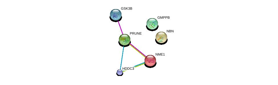 http://string-db.org/version_10/api/image/networkList?limit=0&targetmode=proteins&caller_identity=gene_cards&network_flavor=evidence&identifiers=9606.ENSP00000271620%0d%0a9606.ENSP00000330721%0d%0a9606.ENSP00000309092%0d%0a9606.ENSP00000265433%0d%0a9606.ENSP00000013034%0d%0a9606.ENSP00000324806%0d%0a