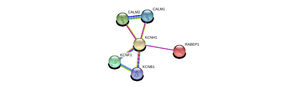 http://string-db.org/version_10/api/image/networkList?limit=0&targetmode=proteins&caller_identity=gene_cards&network_flavor=evidence&identifiers=9606.ENSP00000271751%0d%0a9606.ENSP00000262477%0d%0a9606.ENSP00000272298%0d%0a9606.ENSP00000349467%0d%0a9606.ENSP00000295082%0d%0a9606.ENSP00000360806%0d%0a
