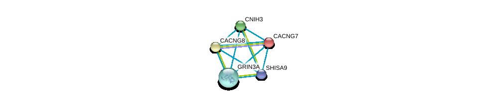 http://string-db.org/version_10/api/image/networkList?limit=0&targetmode=proteins&caller_identity=gene_cards&network_flavor=evidence&identifiers=9606.ENSP00000272133%0d%0a9606.ENSP00000454014%0d%0a9606.ENSP00000222212%0d%0a9606.ENSP00000355155%0d%0a9606.ENSP00000270458%0d%0a9606.ENSP00000270458%0d%0a