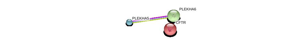 http://string-db.org/version_10/api/image/networkList?limit=0&targetmode=proteins&caller_identity=gene_cards&network_flavor=evidence&identifiers=9606.ENSP00000272203%0d%0a9606.ENSP00000347560%0d%0a9606.ENSP00000003084%0d%0a