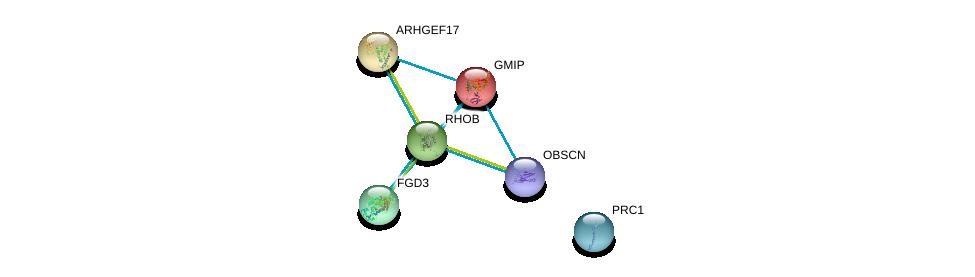 http://string-db.org/version_10/api/image/networkList?limit=0&targetmode=proteins&caller_identity=gene_cards&network_flavor=evidence&identifiers=9606.ENSP00000272233%0d%0a9606.ENSP00000336914%0d%0a9606.ENSP00000203556%0d%0a9606.ENSP00000455507%0d%0a9606.ENSP00000377793%0d%0a9606.ENSP00000263674%0d%0a