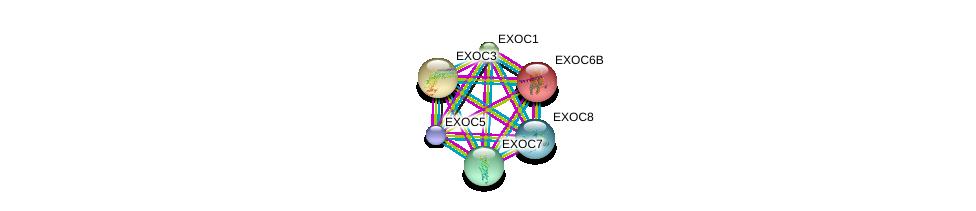 http://string-db.org/version_10/api/image/networkList?limit=0&targetmode=proteins&caller_identity=gene_cards&network_flavor=evidence&identifiers=9606.ENSP00000272427%0d%0a9606.ENSP00000353564%0d%0a9606.ENSP00000389934%0d%0a9606.ENSP00000334100%0d%0a9606.ENSP00000326514%0d%0a9606.ENSP00000323377%0d%0a