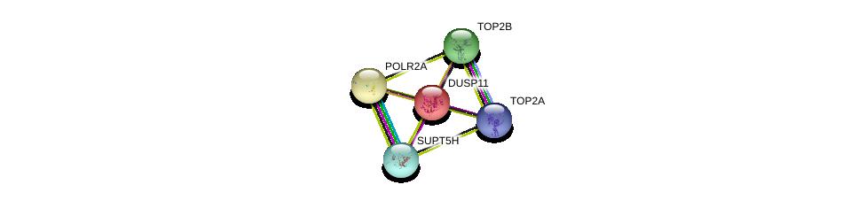 http://string-db.org/version_10/api/image/networkList?limit=0&targetmode=proteins&caller_identity=gene_cards&network_flavor=evidence&identifiers=9606.ENSP00000272444%0d%0a9606.ENSP00000404029%0d%0a9606.ENSP00000411532%0d%0a9606.ENSP00000396704%0d%0a9606.ENSP00000396704%0d%0a9606.ENSP00000314949%0d%0a