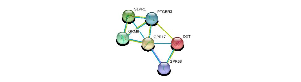 http://string-db.org/version_10/api/image/networkList?limit=0&targetmode=proteins&caller_identity=gene_cards&network_flavor=evidence&identifiers=9606.ENSP00000272644%0d%0a9606.ENSP00000434045%0d%0a9606.ENSP00000344173%0d%0a9606.ENSP00000305416%0d%0a9606.ENSP00000217386%0d%0a9606.ENSP00000349003%0d%0a