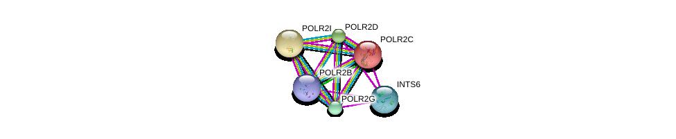 http://string-db.org/version_10/api/image/networkList?limit=0&targetmode=proteins&caller_identity=gene_cards&network_flavor=evidence&identifiers=9606.ENSP00000272645%0d%0a9606.ENSP00000221859%0d%0a9606.ENSP00000219252%0d%0a9606.ENSP00000301788%0d%0a9606.ENSP00000310260%0d%0a9606.ENSP00000312735%0d%0a